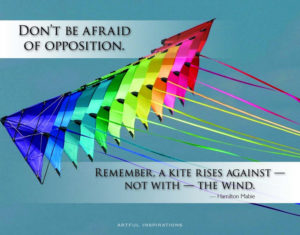 Don't be afraid of opposition